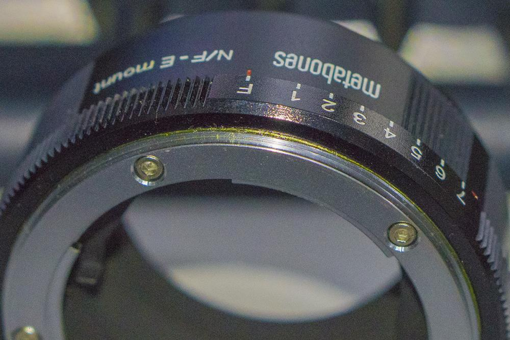 MS 03.jpg