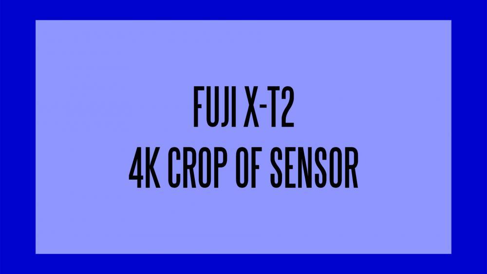 fuji-xt-2.jpg