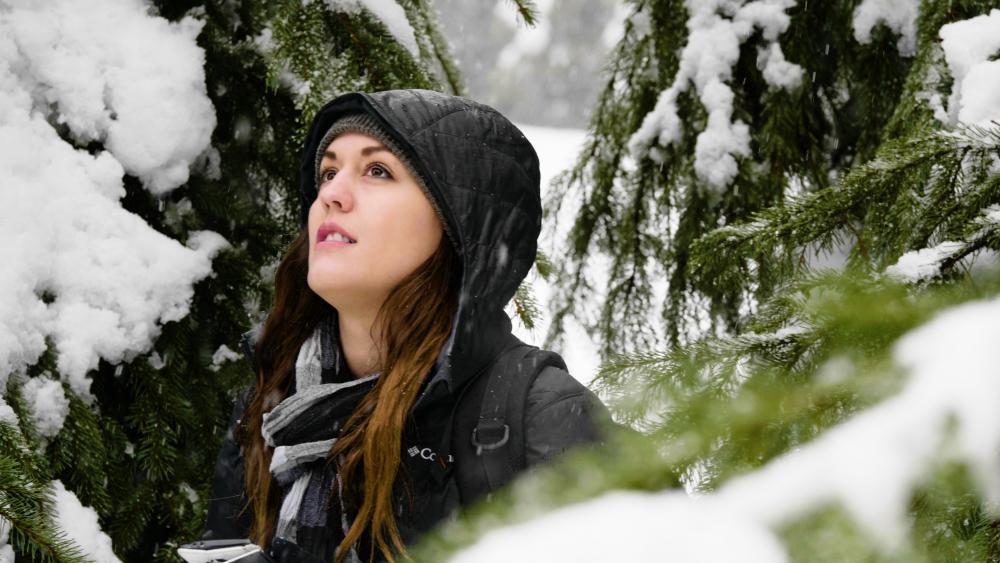 [60p Snow Hand]01601h11m26.00_00_03_16.Still008.jpg