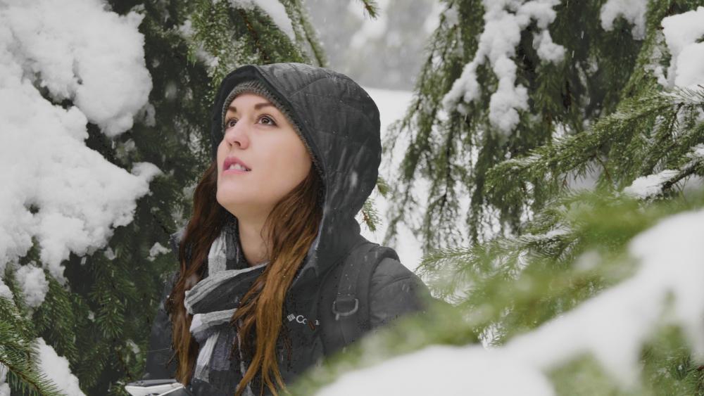 [60p Snow Hand]01601h11m26.00_00_03_16.Still007.jpg