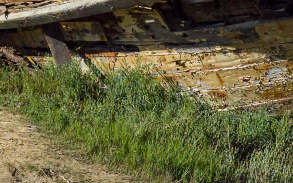 PointReyesShipwreck-crop.jpg