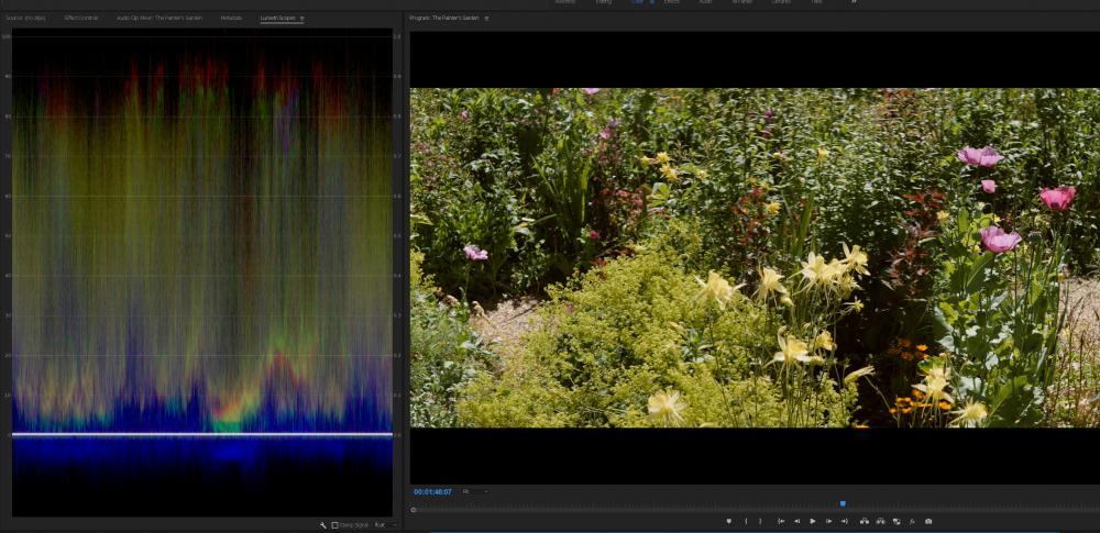 painters-garden.jpg