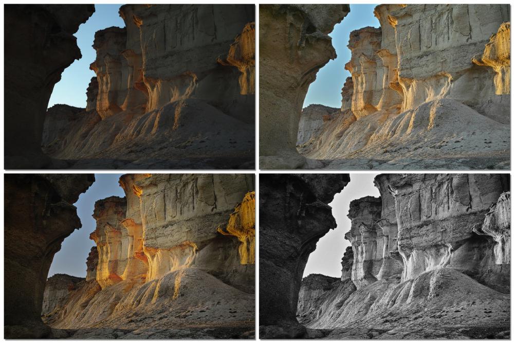 Collage3.thumb.jpg.7923c63bbc81efba6f8f397694084b0c.jpg