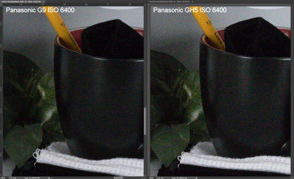 G9 vs GH5 ISO 6400 RAW.jpg