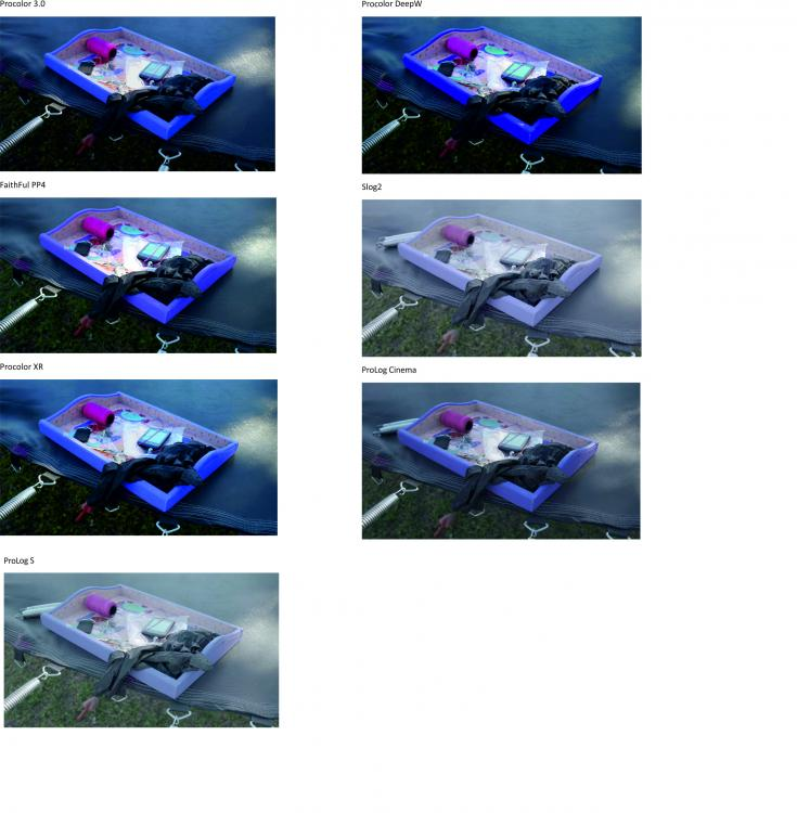5a77431c1cc6c_Procolor3comparativa.thumb.jpg.6e796d79e109f387f4a9ba749111a659.jpg