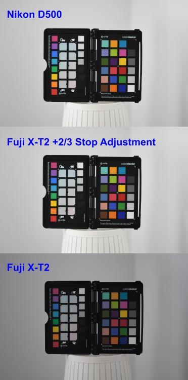 Composite2.thumb.jpg.2259617f4e929a31b1267105b6a68db9.jpg