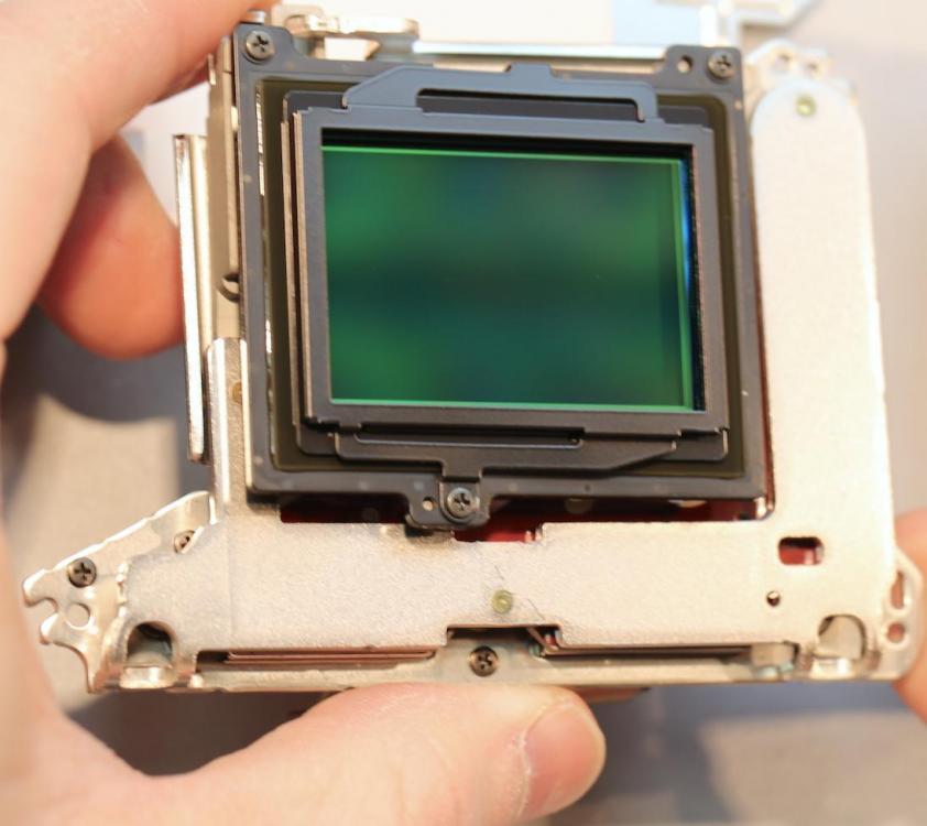 sensor-assembly.jpg