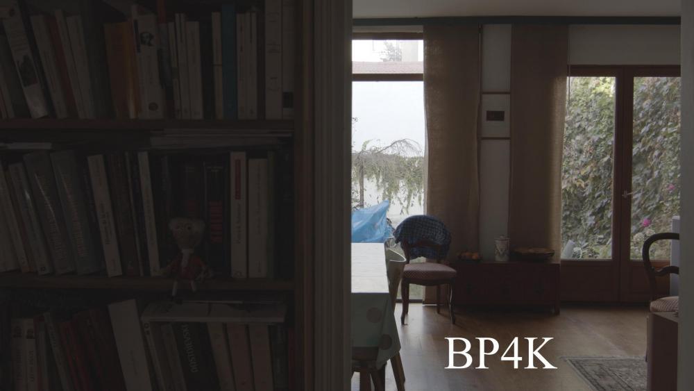 BP4K DR_1.1.4.jpg