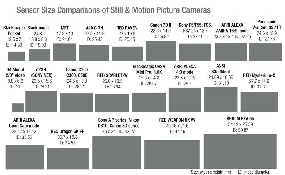 Sensor-sizes-FDTimes.jpg