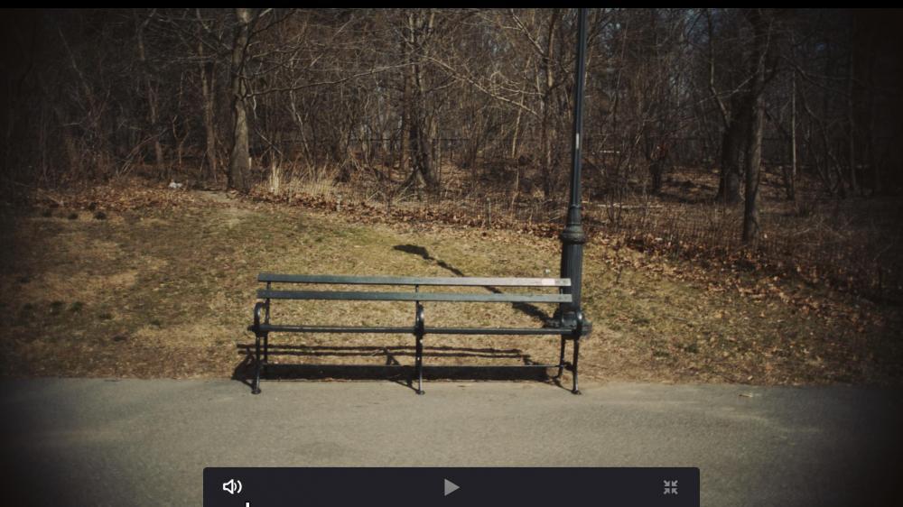Screen Shot 2019-03-29 at 4.52.33 PM.jpg