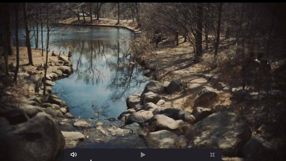 Screen Shot 2019-03-29 at 4.51.39 PM.jpg