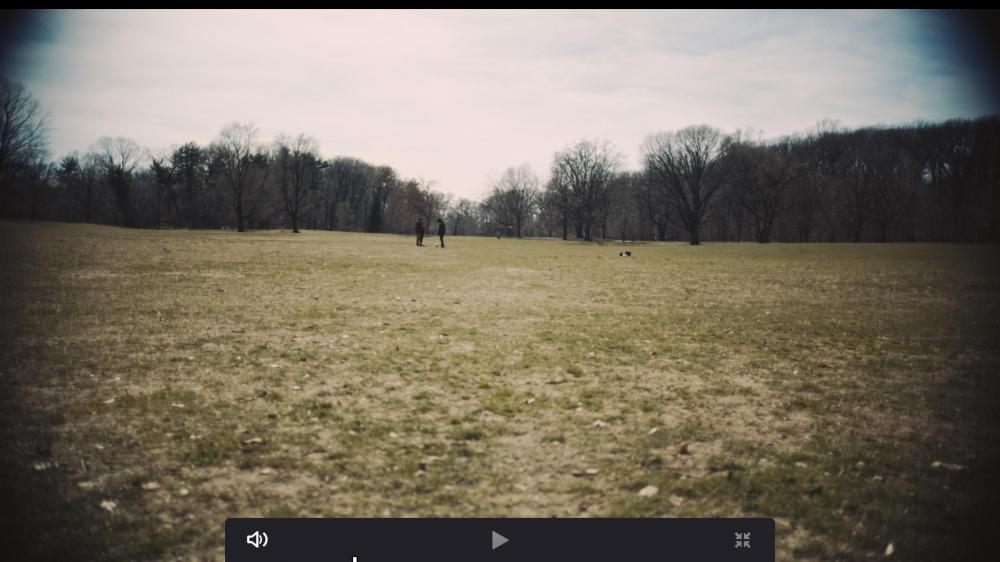 Screen Shot 2019-03-29 at 4.52.26 PM.jpg