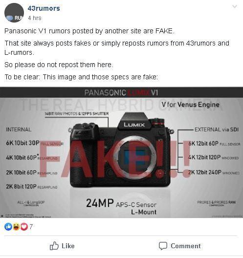 fake.JPG