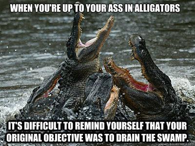 alligators.jpg.0580e465b9255433338644e94d9a7467.jpg