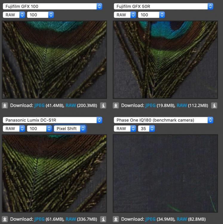 gfx-100-vs-s1r-pixel-shift.jpg