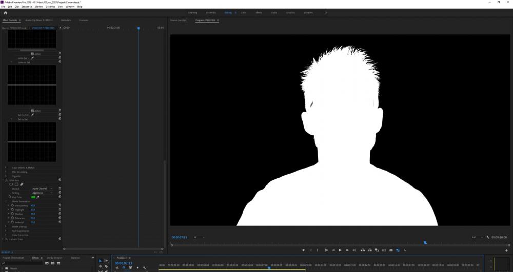 Adobe Premiere Pro 2019 - D__Video_100_ev_2019_Project_Chromateszt _ 2019. 12. 23. 18_01_12.png