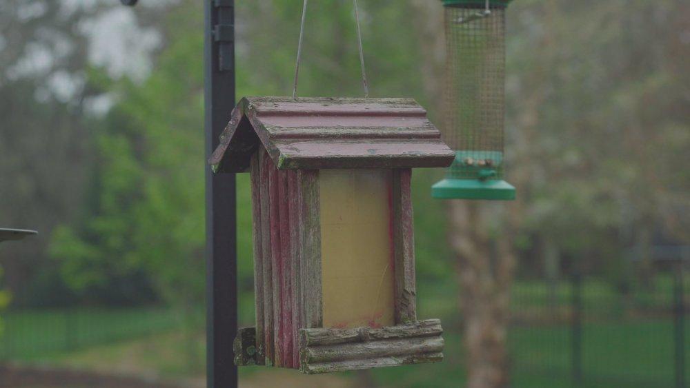 LC709 birdhouse_3.1.2.jpg