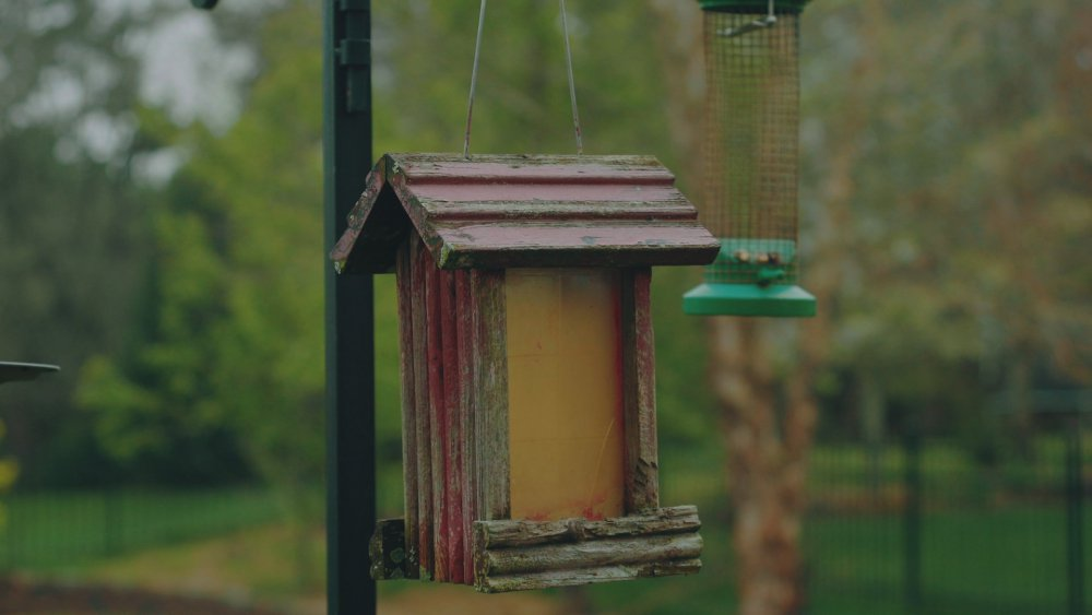 gradedbirdhouse_3.1.3.jpg