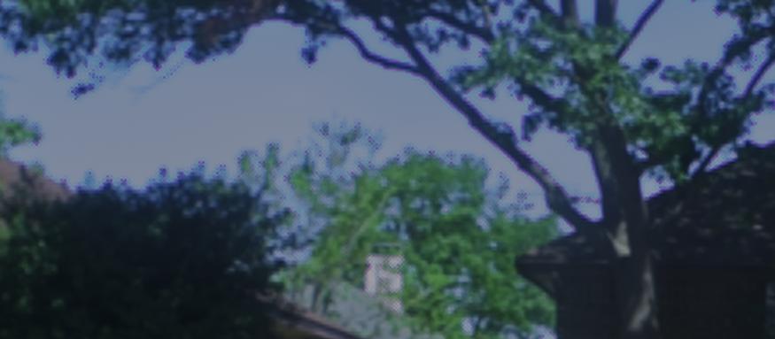 Screen Shot 2020-04-13 at 12.46.23 PM.png