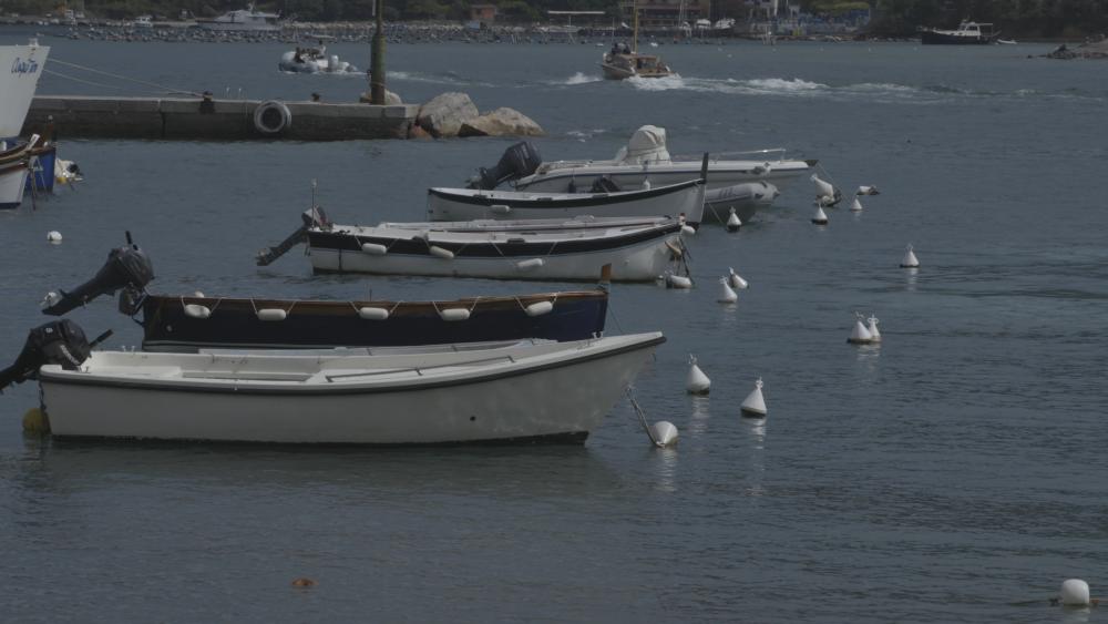 boats_1.1.1.thumb.png.32233c5a8c58937a3b06d425674cd0b1.png