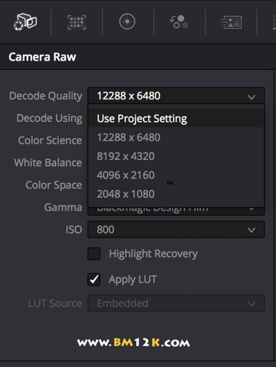 Blackmagic USRA Mini Pro 12k Camera Raw Decode Quality Options www.bm12k.com.jpg