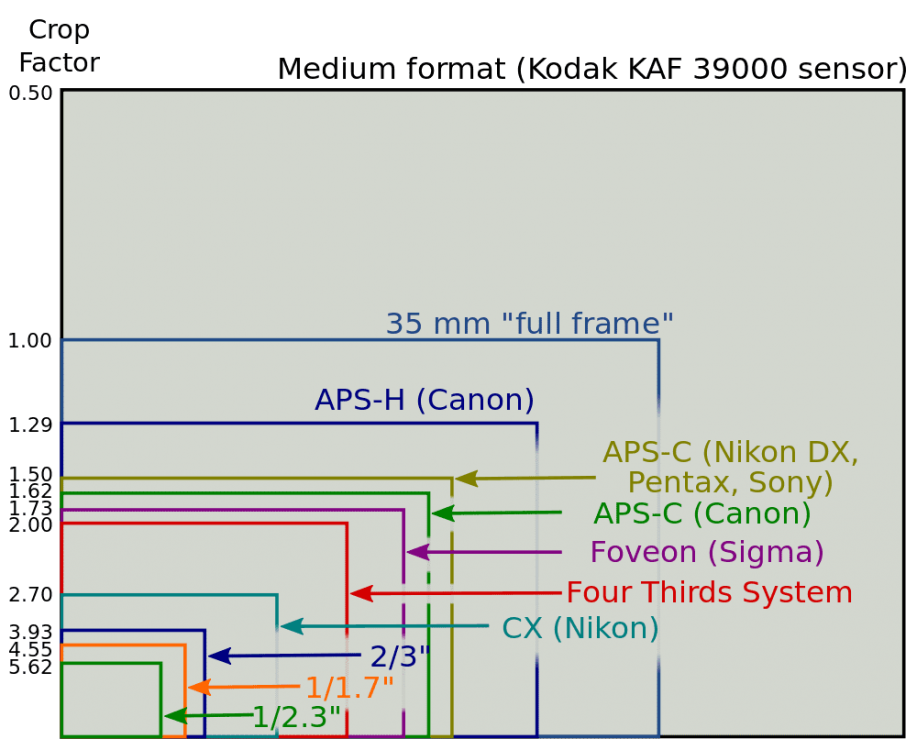 Sensor-Sizes-and-Crop-Factors.png