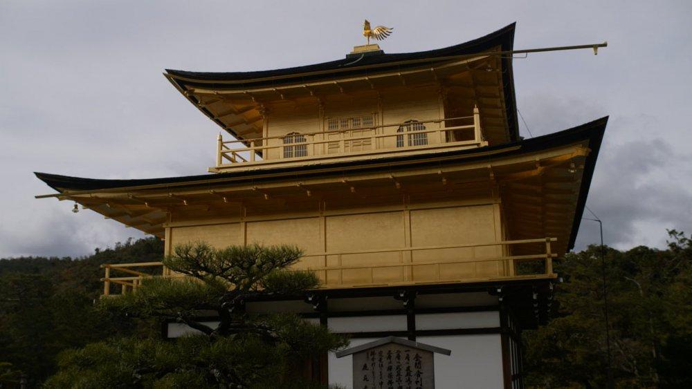 Japan_3_77.1.thumb.jpg.e23dead7cae8b2e92445ae819faf7249.jpg