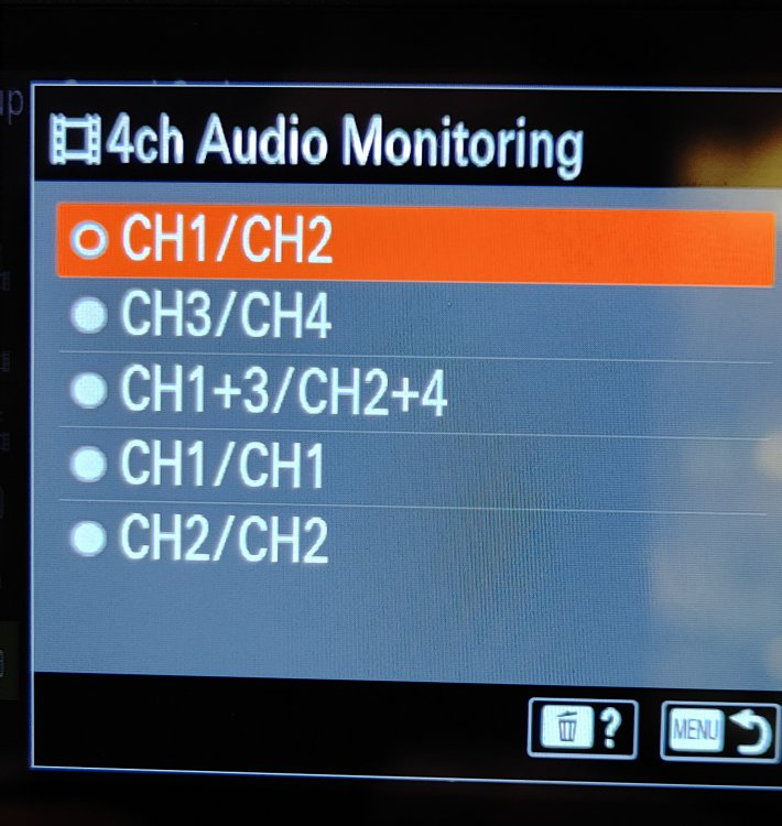 SonyA7SIII_Audio_Monitoring.jpg