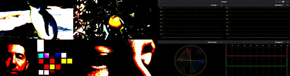 image.thumb.png.6fcd7fc87eefa3c93f12fbf06f7162b0.png
