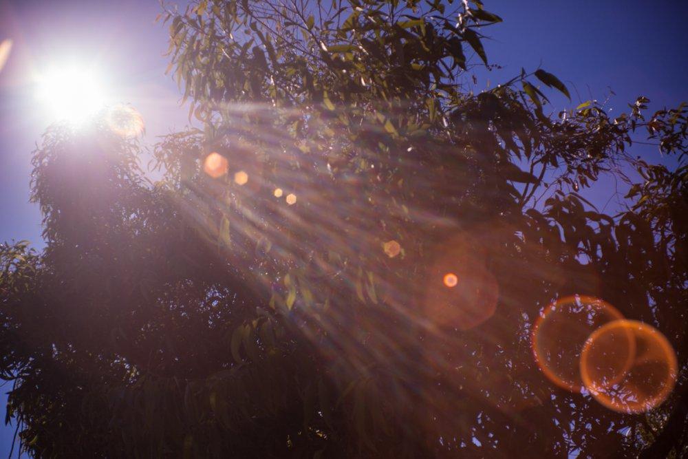 Nikonflares.jpg