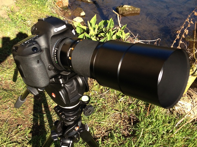 5D Mark III - 300mm Zeiss in Contax Yashica mount