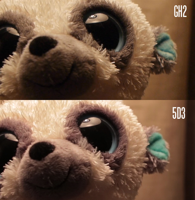 CineStyle on the 5D Mark III and fixing softness in post - EOSHD