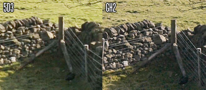 5D Mark III vs GH2 - lows