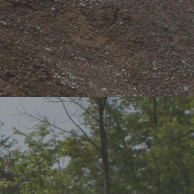 1D C - 4K image quality crop