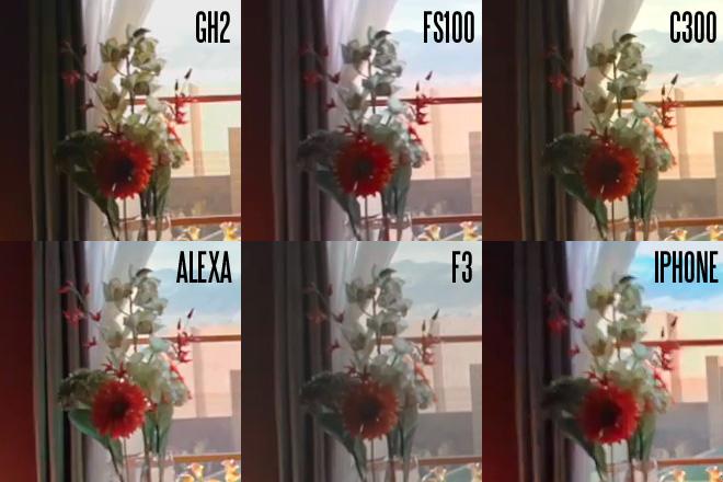 Zacuto Revenge 1080p crops