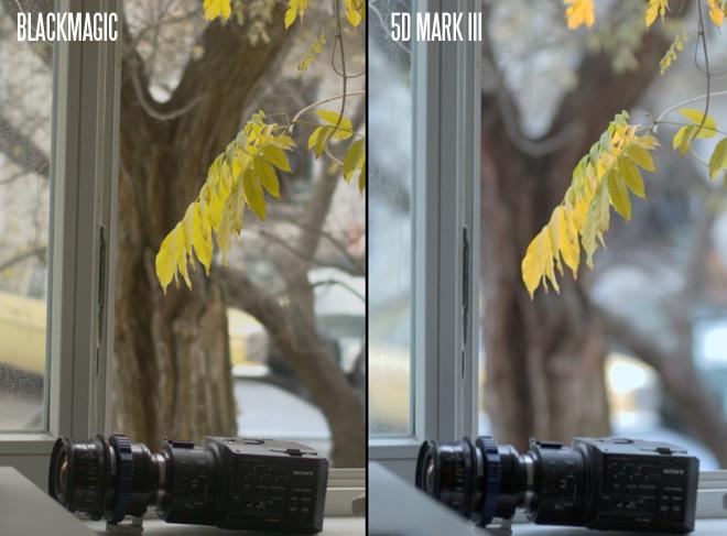 BMCC vs 5D Mark III