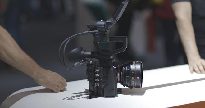 Canon 1D C 4K frame grab