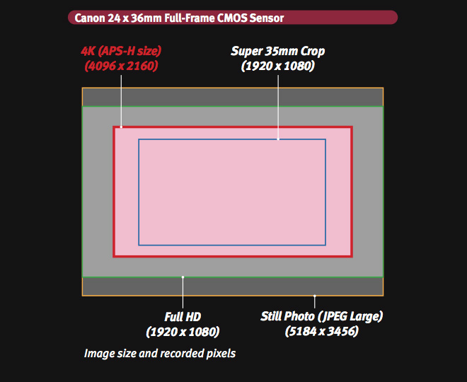 Canon 1D C sensor size and recording areas