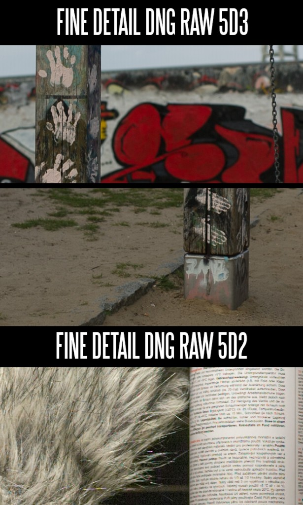 5D Mark III vs II - DNG raw