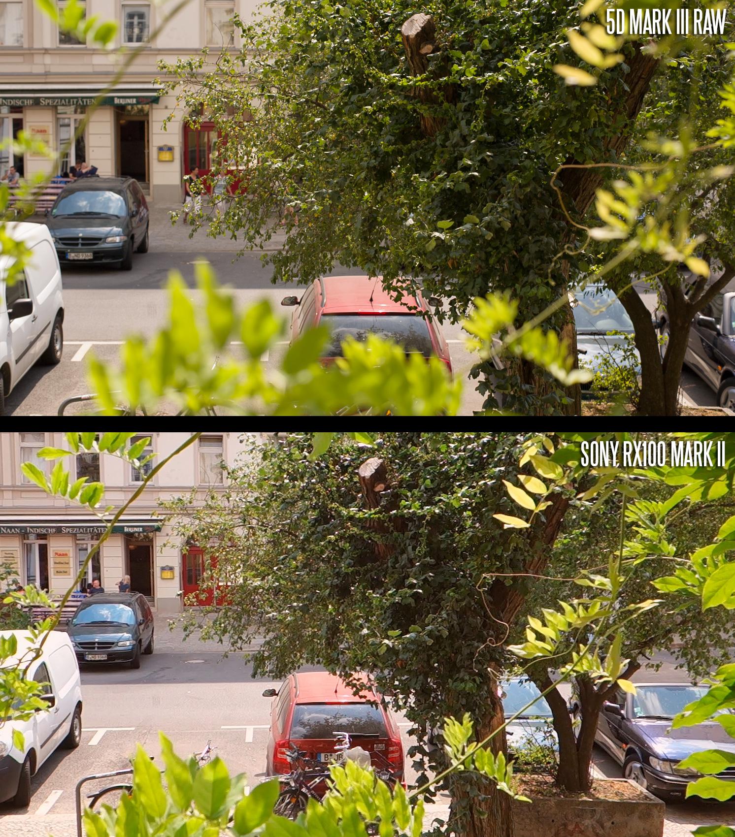 Photoshop :: Reading Canon 5D MK III Raw Files In CS4?