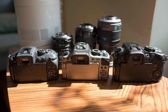 G6, GH2 and GH3