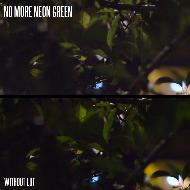 5d3-lut-neon-green