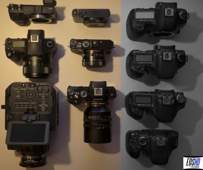 Sony vs Canon camera diversity
