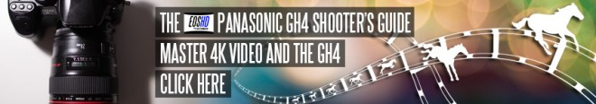 The EOSHD Panasonic GH4 Shooter's Guide