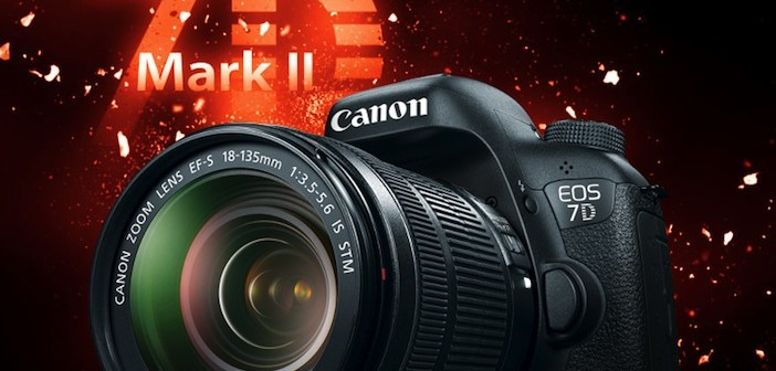 ... Mark II video specs vs the enthusiast DSLR competition (GH4, A7S, 5D3