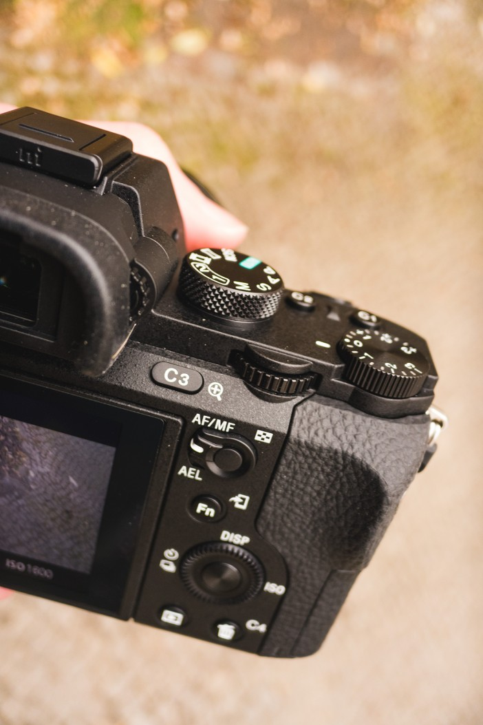 The Sony A7 II rear controls