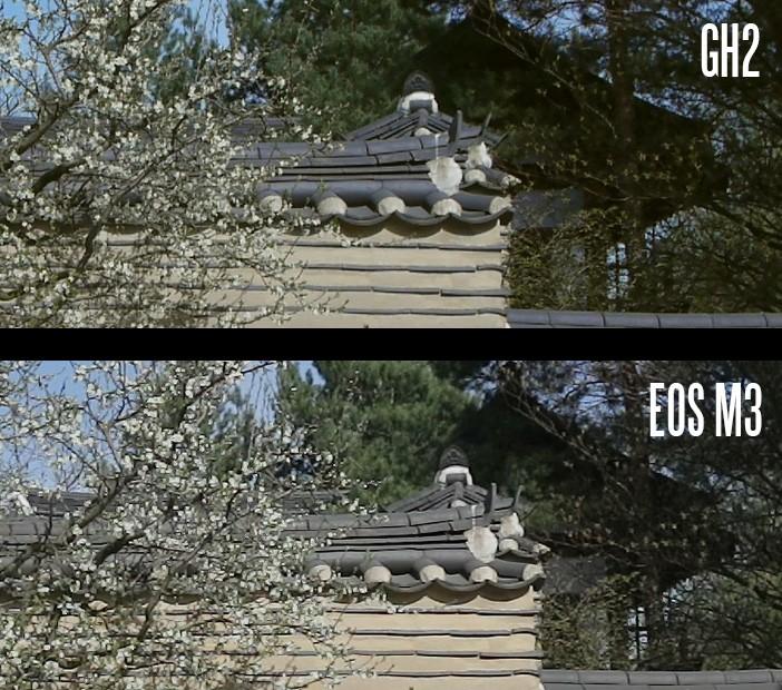 EOS M3 vs GH2