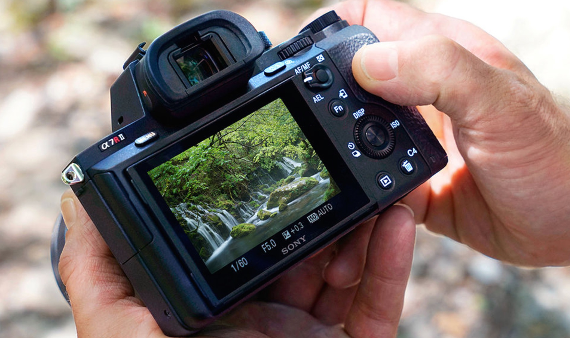 Finally, something worth talking about - Sony A7R II with