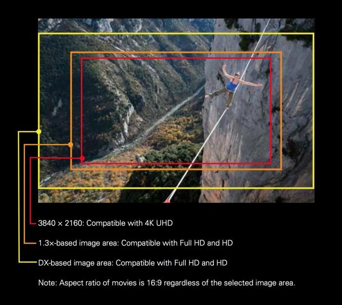 Nikon D500 4K crop