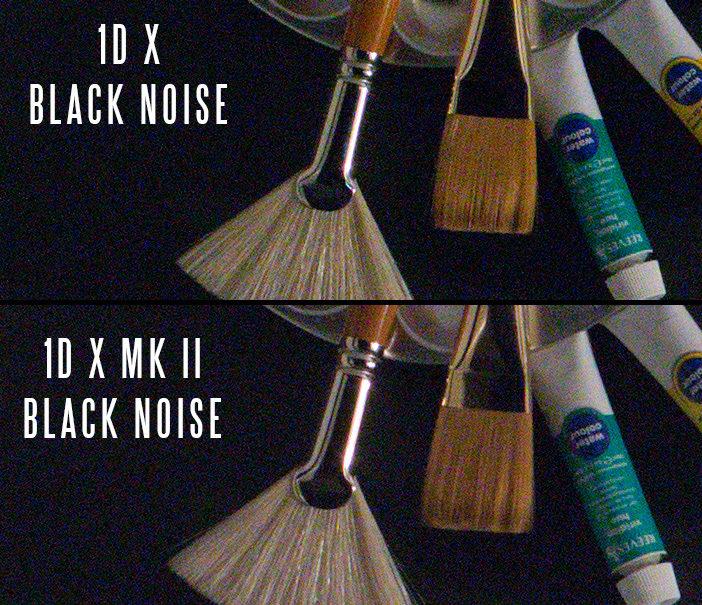 1D X Mark II noise